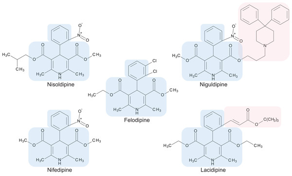 Chemical structures of 1,4-dihydropyridine calcium channel blockers: nisoldipine, nifedipine, felodipine, niguldipine and lacidipine.