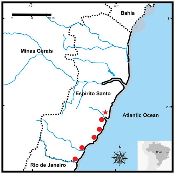 Geographic distribution of Pseudopaludicolarestinga sp. nov.