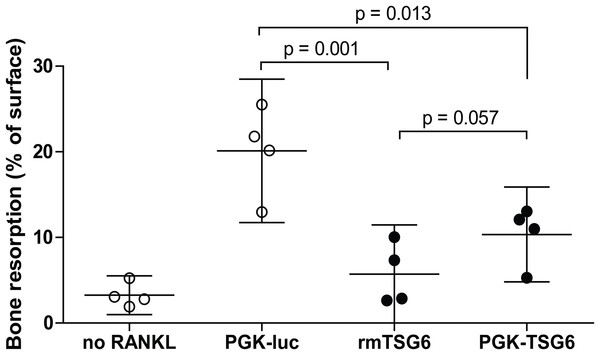 Bone resorption by bone marrow-derived cells (BMDCs) after TSG-6 treatment.