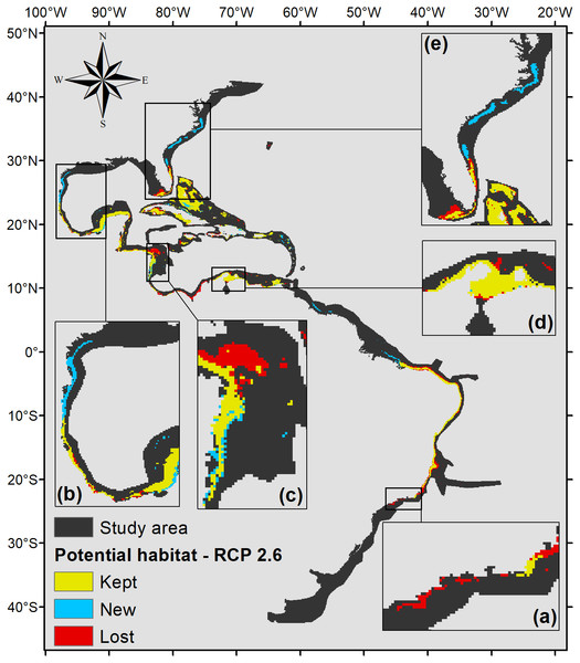 Suitable habitat for P. caribaeorum for the year 2100 under the RCP 2.6 climate scenario, which includes regions with retained, new, and lost suitability compared with the present.