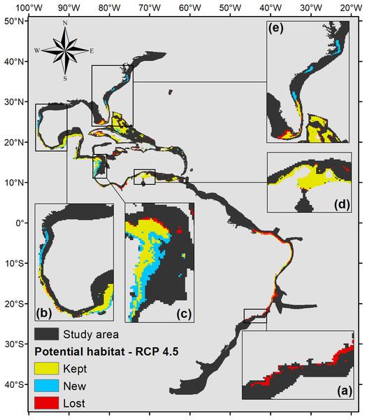 Habitat suitability map for P. caribaeorum. in the year 2100 under the RCP 4.5 climate scenario.