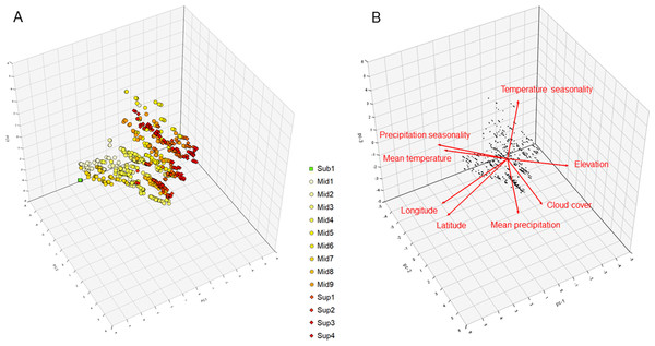 3D representation of the (A) vegetation plots and (B) geo-climatic variables along the three first principal components of the principal component analysis (cumulative variance explained 76.9%) conducted on the páramo vegetation dataset.