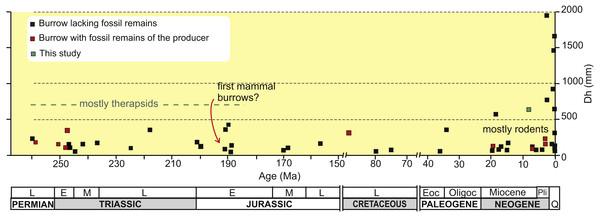 Plot of horizontal diameter of fossil tetrapod burrows vs age.