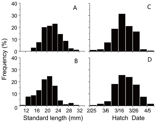 Distributions of standard length and hatching date.