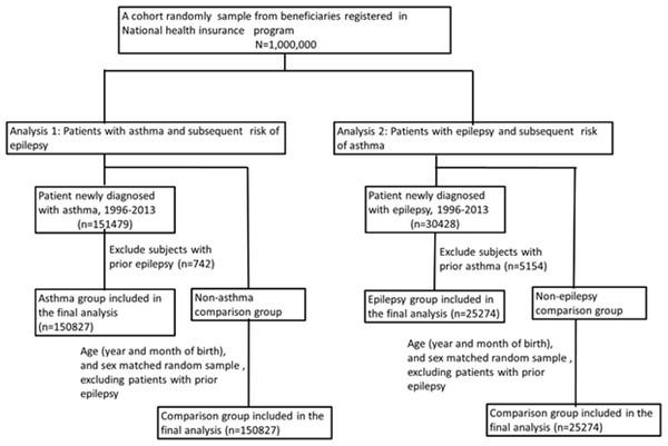 Flowchart of study patient selection.