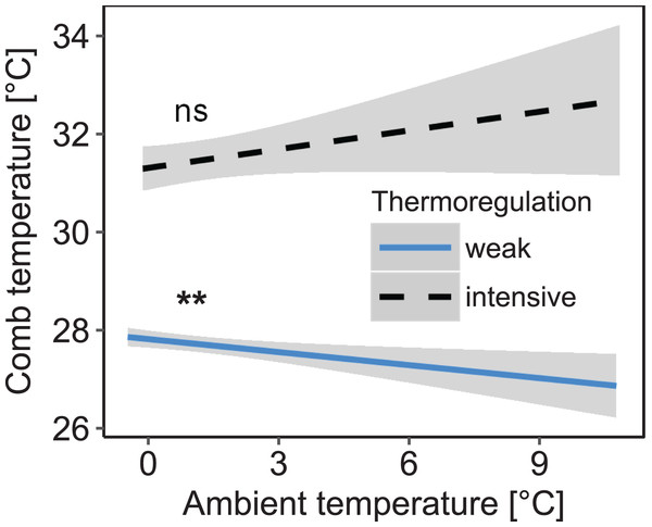 Decreased daily variation of comb temperature in honey bee colonies is accompanied by a significant increase of mean comb temperature which is no longer significantly affected by ambient temperature.