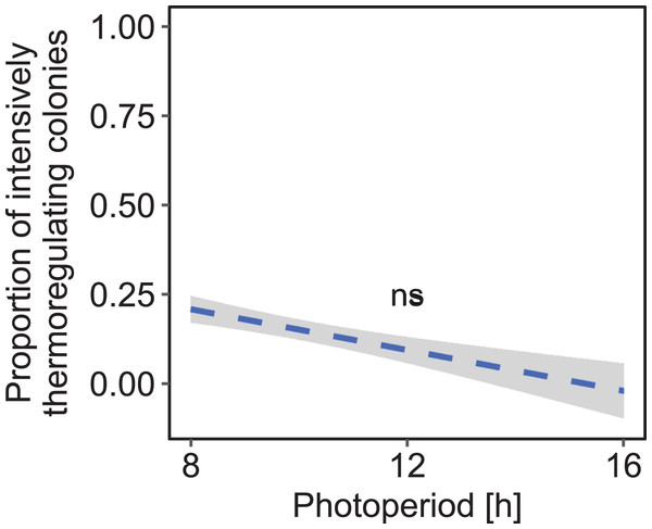 The proportion of brood rearing honey bee colonies was not significantly correlated with the duration of photoperiod under constant cold conditions.