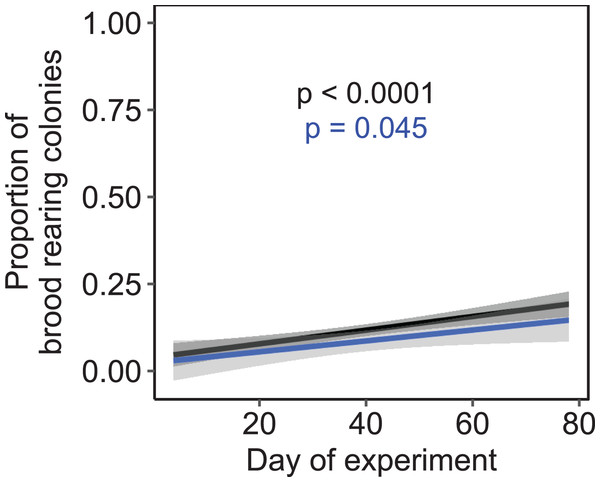 The proportion of brood rearing honey bee colonies increased significantly with the elapsed time.