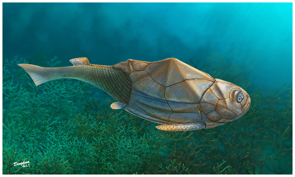 Life reconstruction of Phymolepis cuifengshanensis.