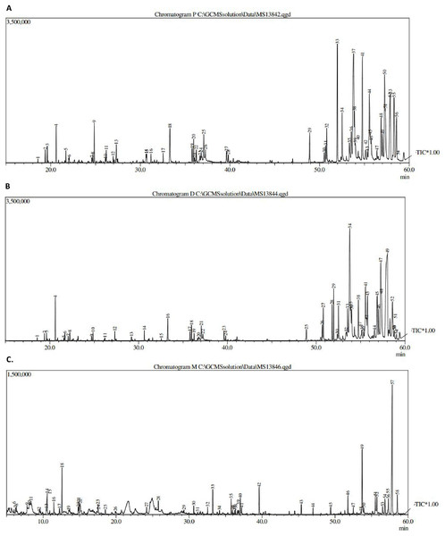 GCMS chromatogram of (A) pet. ether extract, (B) DCM extract and (C) MeOH extract.