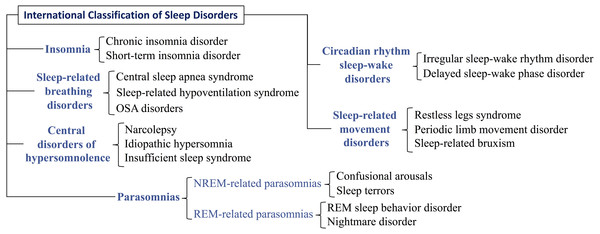 Classification of the main disorders evaluated with a polysomnography.