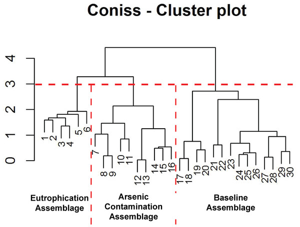 Arcellinida assemblages based on CONISS.