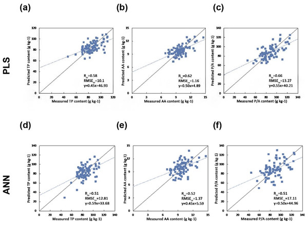 Scatter plots of the reference versus predicted foliar biochemical contents (g kg-1) using PLS and ANN regression (the solid line is the 1:1 line and the dashed line is the regression line between the predicted and measured values) (A) Predicting TP using PLS regression  (B) Predicting AA using PLS regression (C) Predicting P/A using PLS regression (D) Predicting TP using ANN (E) Predicting AA using ANN (F) Predicting P/A using ANN.