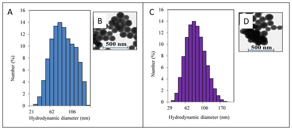 Characterisation of nanoparticles.