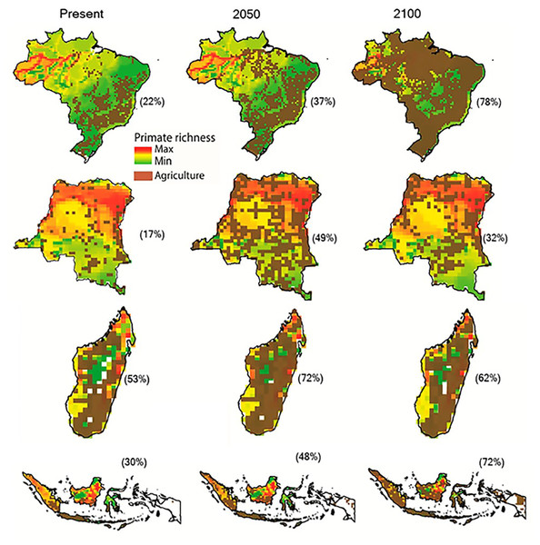 The projected expansion of agriculture and pastures in (A) Brazil, (B) the Democratic Republic of the Congo, (C) Madagascar, and (D) Indonesia for 2050 and 2100, under a worst-case scenario of land use from native vegetation to agricultural fields and pasture.
