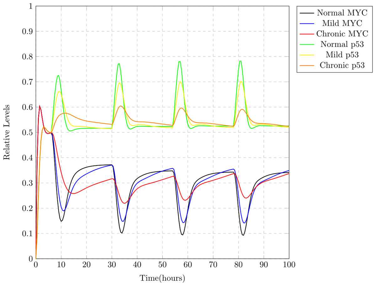 modeling and analysis of the impacts of jet lag on circadian rhythm