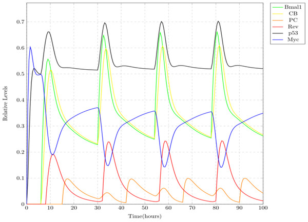 Simulation results showing mild effect of jet lag on circadian clock.