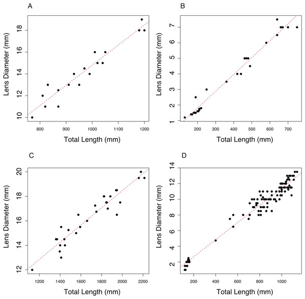 The relationship between total length (TL) and lens diameter (LD) in four fishes.