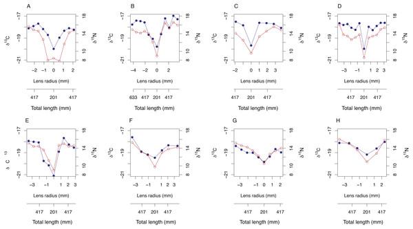 Bivariate plots (A–H) of δ15N (blue) and δ13C (red) variability through A. carbo lenses.