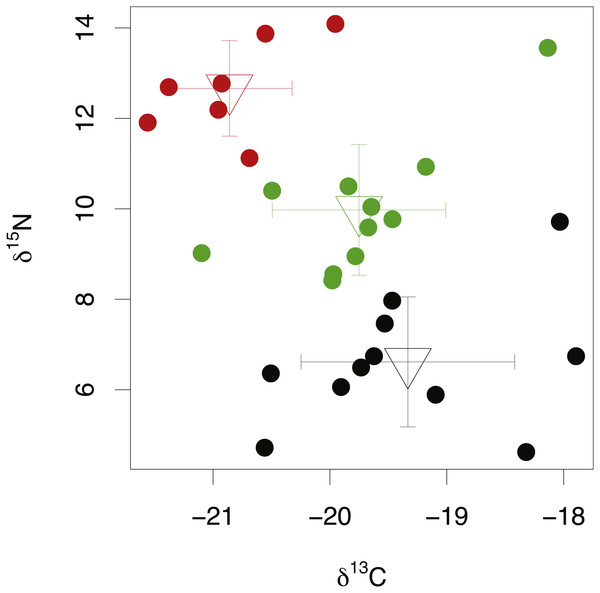 Stable isotope compositions of lens tissues between species.