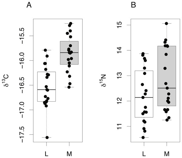 Tissue-specific differences in isotopic compositions in embryonic sharks.