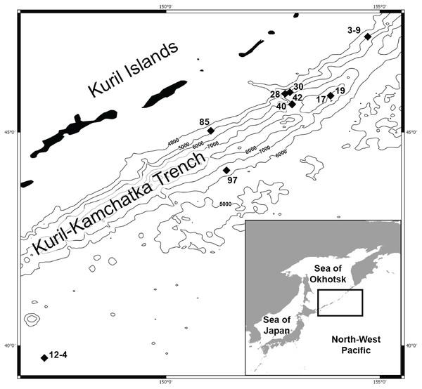 Map of the Kuril Kamchatka Trench sampling area.