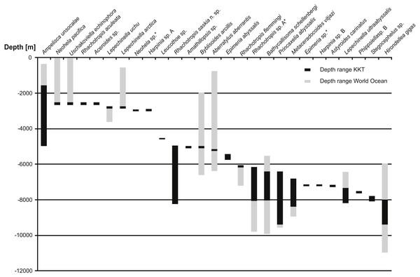 Depth ranges of benthic species recorded in Kuril Kamchatka Trench area.