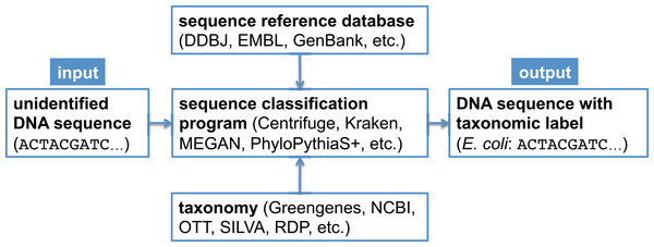 Canonical workflow for the classification of metagenomic sequences.