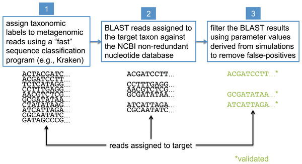 Workflow for BLAST-based validation of taxonomic assignments.