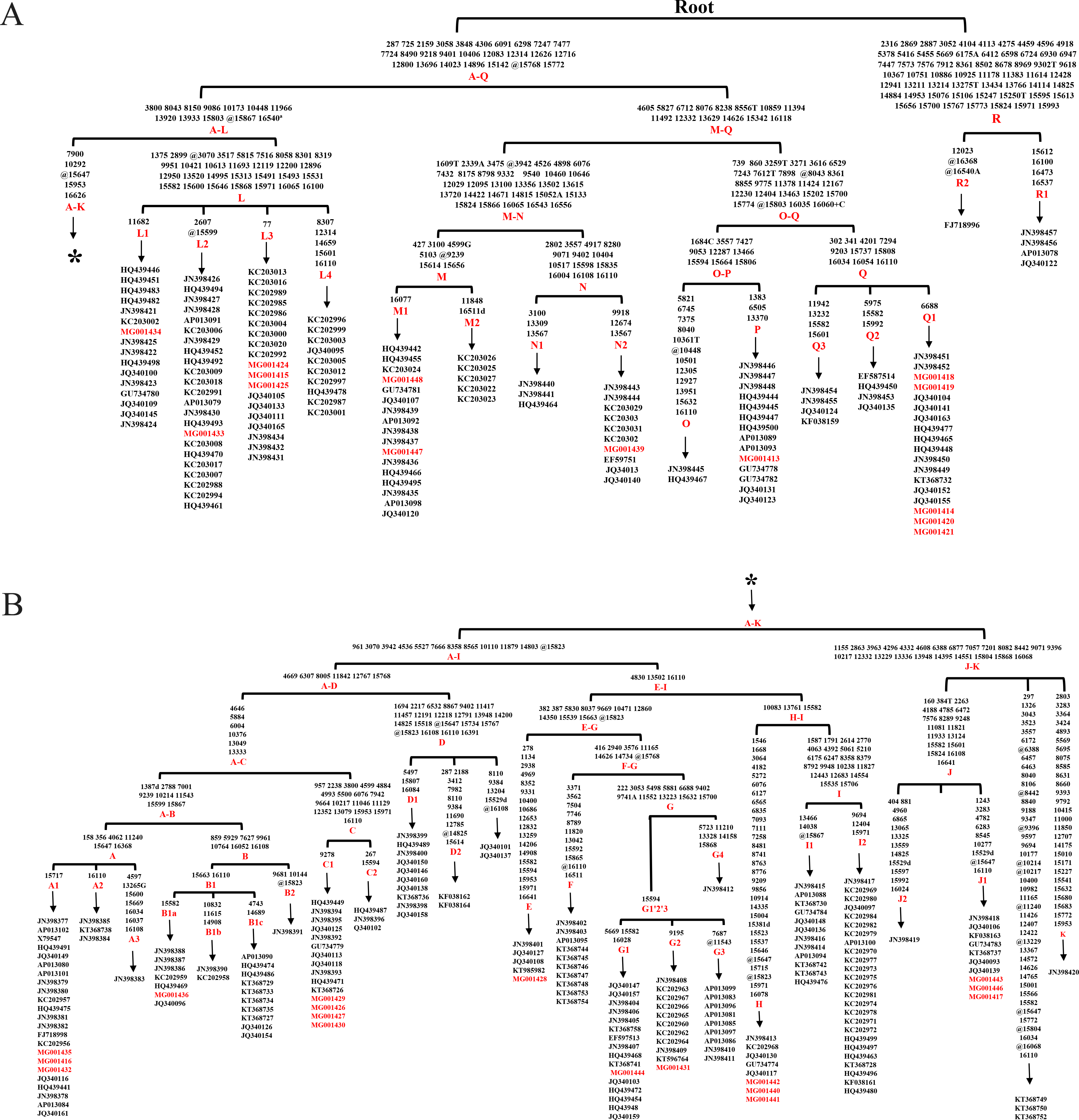 Some maternal lineages of domestic horses may have origins