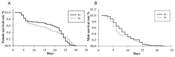 Longevity of female and male N. vitripennis with different Wolbachia infection statuses.