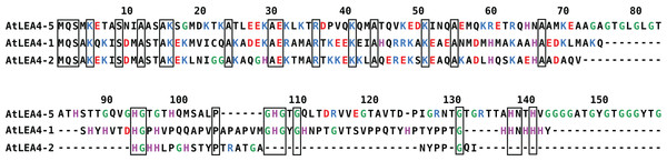 Sequence alignment for group 4 LEA proteins from Arabidopsis thaliana: AtLEA4-5, AtLEA4-1, and AtLEA4-2.