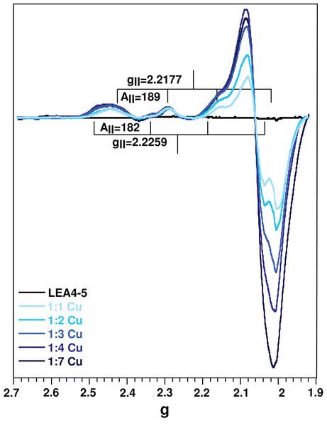 Cu(II)-AtLEA4-5 complex formation by EPR.