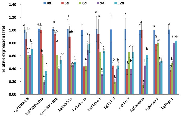 Relative expression levels of 11 candidate RNA interference target genes at different time points after soybean pod borer larvae were fed separate artificial diets containing the respective dsRNA (10 µg/g).