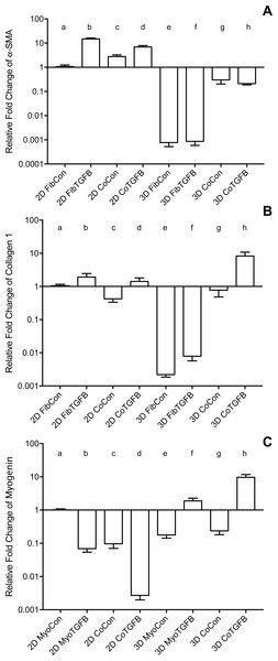 Gene expression of fibroblast collagen 1 and α-SMA and myoblast myogenin in 2D cell cultures and 3D self-assembled tissue conditions.
