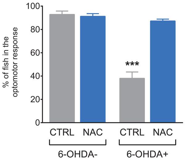 Effects of NAC on 6-OHDA-induced optomotor response deficit in zebrafish larvae.