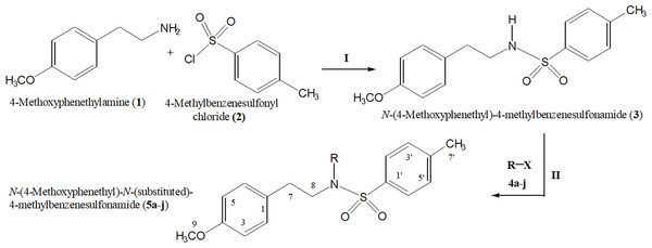 Outline for the synthesis of different N-substituted derivatives, 5a–j, of N-(4-methoxyphenethyl)-4-methylbenzensulfonamide (3).