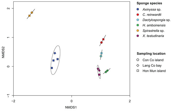 Non-metric multidimensional scaling (NMDS) plot derived from Bray–Curtis distances of sponge prokaryotic communities at OTUs level, NMDS stress value = 0.116.