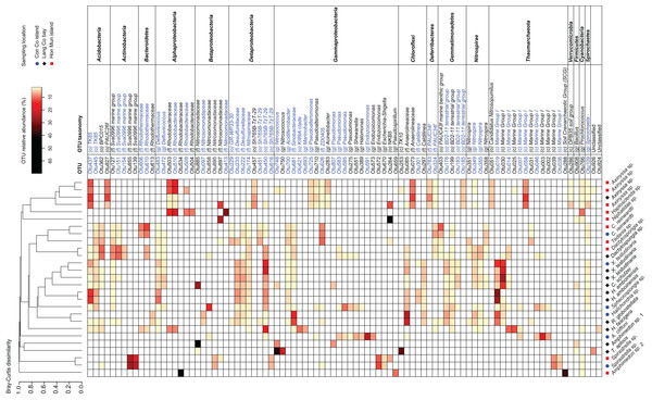 Heatmap of the most abundant OTUs (>=2.5% of the total reads in at least one of the samples).