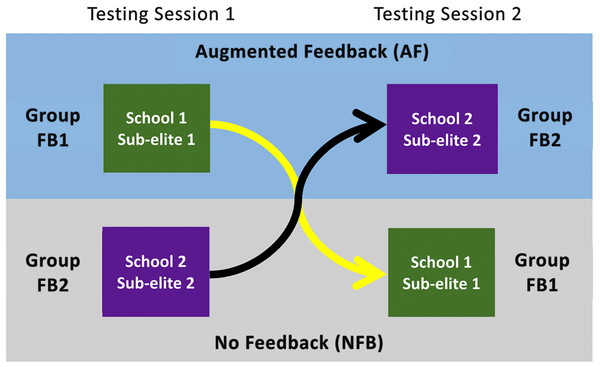 Crossover design for experiment testing the effect of augmented feedback compared to no feedback on 44 male cricketers.