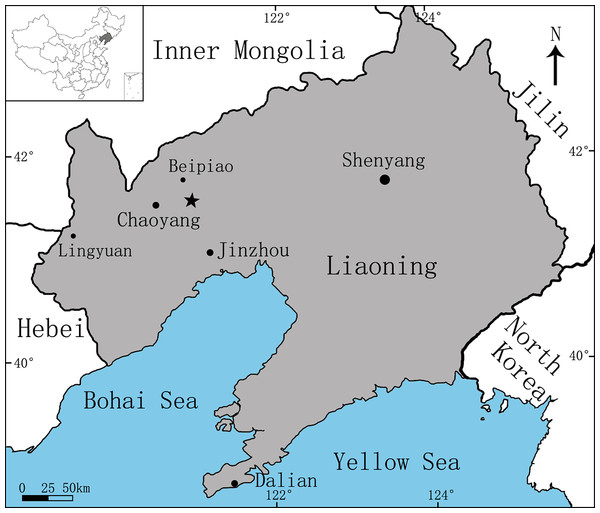 Area map showing the fossil locality (marked by an asterisk) of Sinovenator (PMOL-AD00102) in Lujiatun Village, Shangyuan, Beipiao City, western Liaoning Province, China.