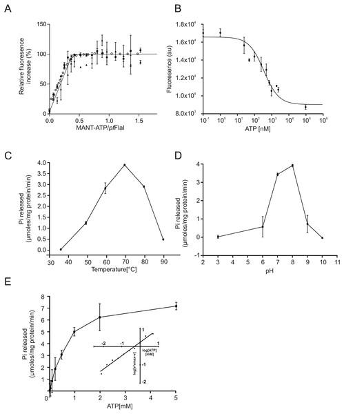 ATP binding and hydrolysis of PfFlaI.