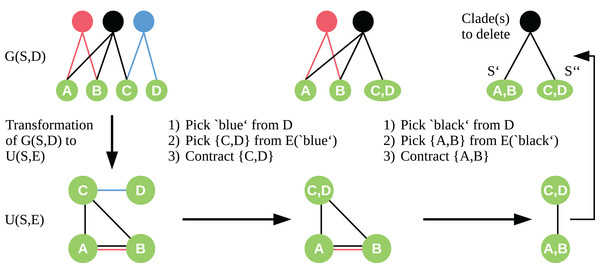 Workflow of the cut sampling algorithm (Section Cut Enumeration) including the transformation from G(S, D) to U(S, E) and the two-step edge selection process we use in the recursive contraction algorithm.
