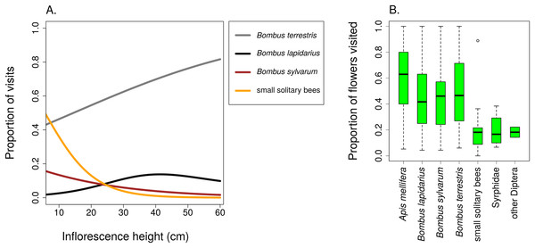 Different insects varied in their contribution to inflorescence visitation and visited different proportions of flowers per inflorescence.