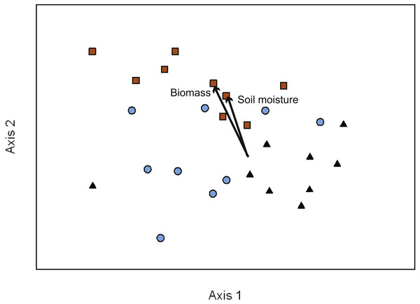 NMDS ordination of EMF communities associated with each transect (10 seedlings per transect).