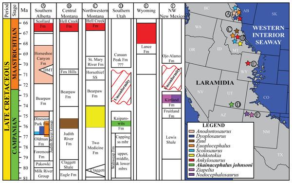 Distribution of Late Cretaceous Laramidian ankylosaurid dinosaurs.