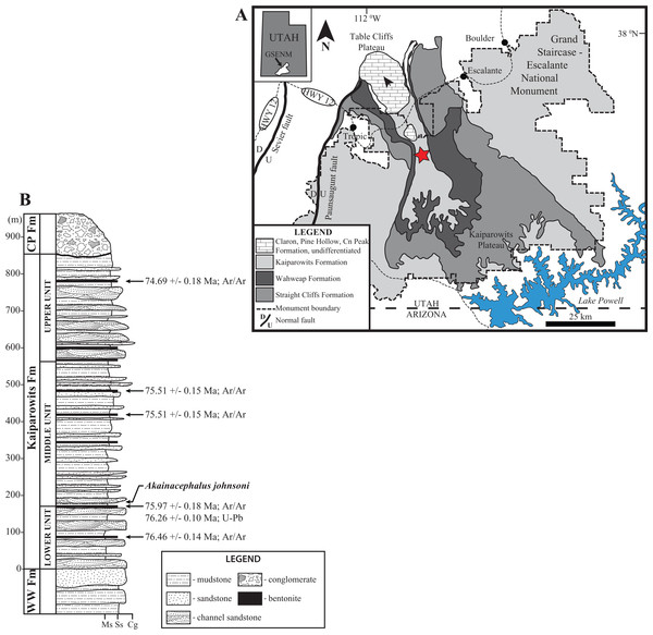 Location and stratigraphy of the Kaiparowits Formation.