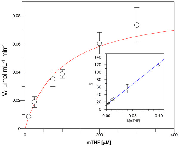 Michaelis-Menten kinetics for VpTS using mTHF as substrate.