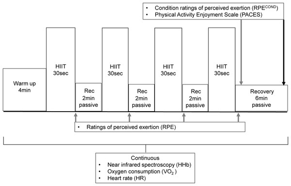 The format and timing of measurements of the HIIT sessions.