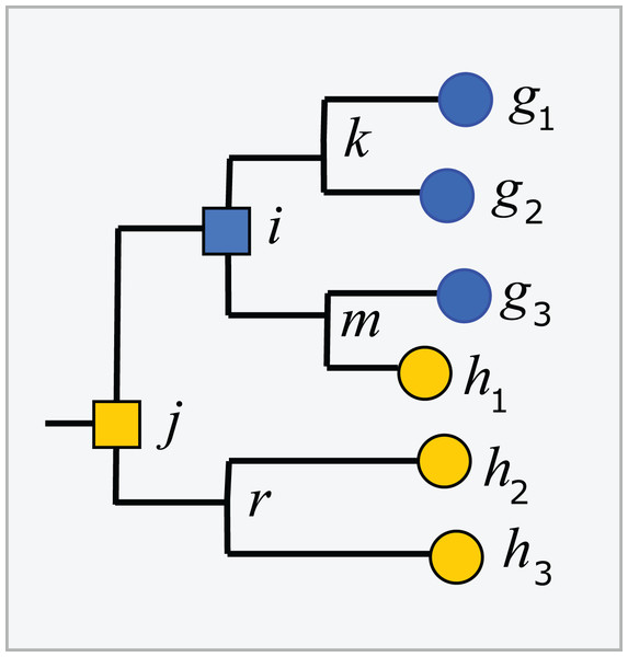 Example tree showing conflicts with taxonomy.